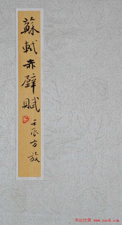 方放书法作品欣赏 苏轼赤壁赋图片