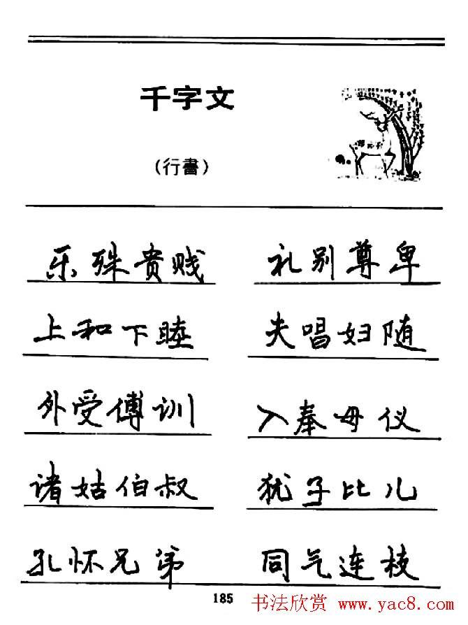 钢笔书法《千字文》行书字帖欣赏(9)图片