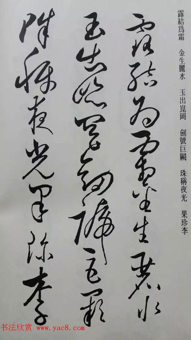 罕见的怀素草书《千字文》净云枝藏帖