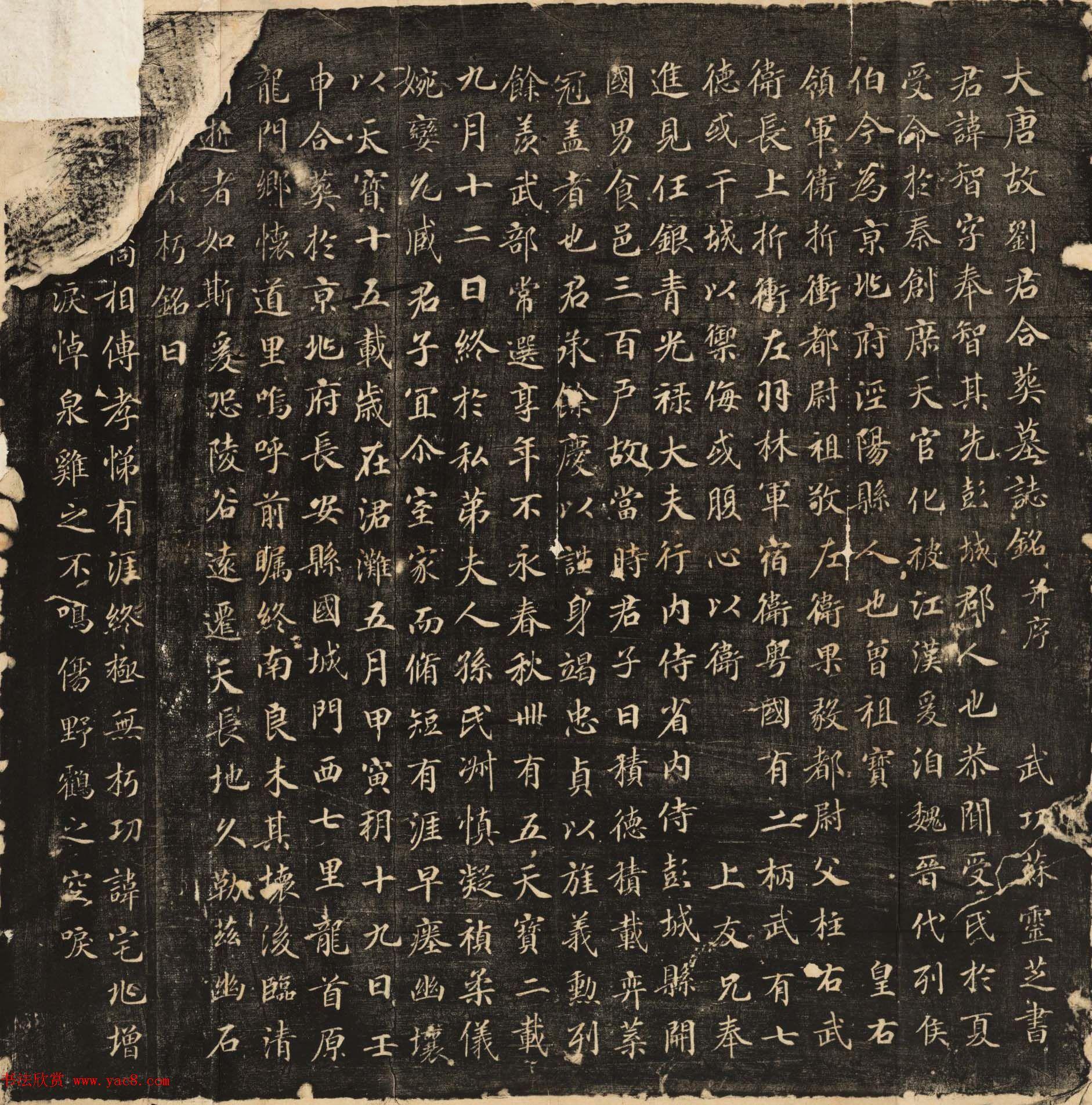 苏灵芝书法欣赏《刘智墓志铭》高清大图