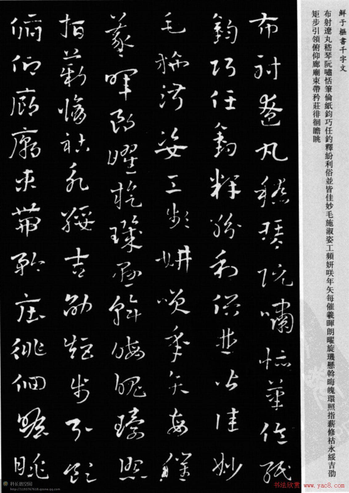 28字古诗毛笔作品_鲜于枢章草书法欣赏《千字文》大图 - 第14页 _草书字帖_书法欣赏