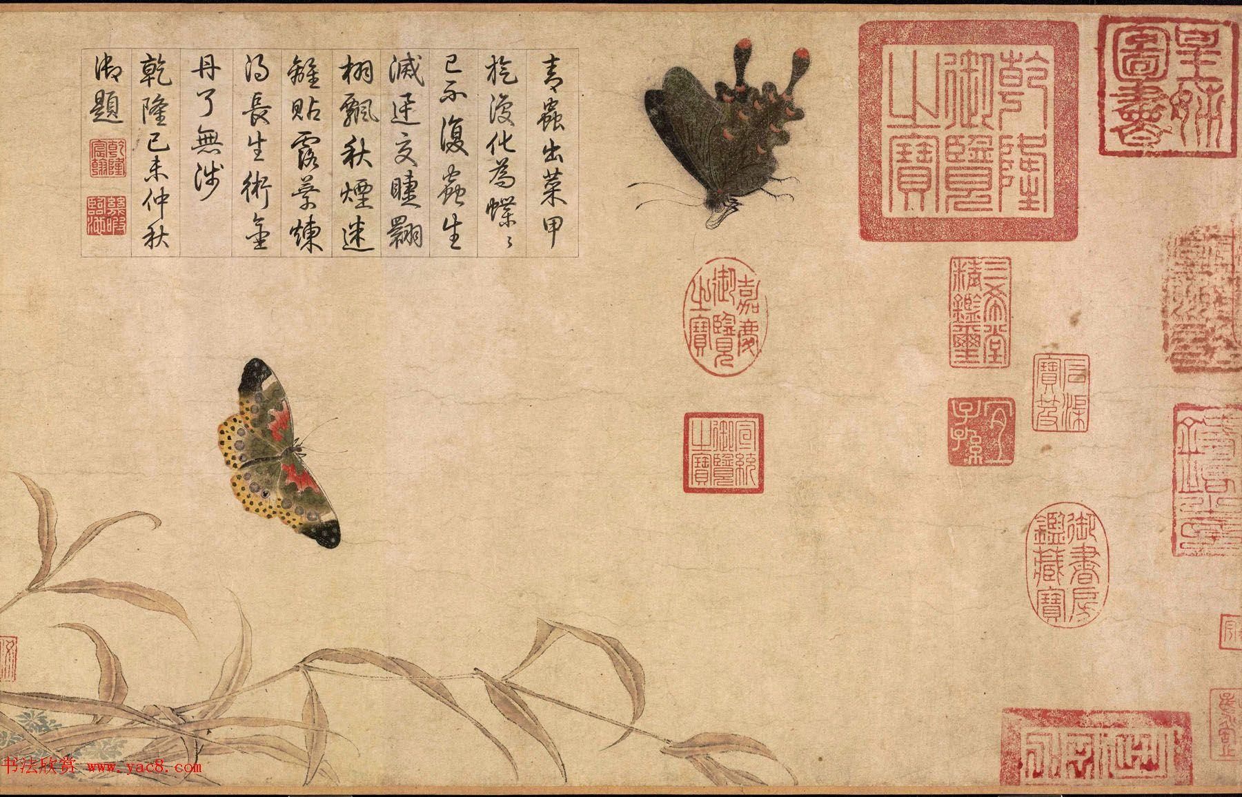 北宋宫廷画家赵昌绘画赏析《写生蛱蝶图卷》