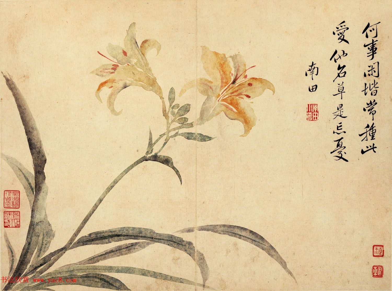 清代恽寿平书法字画花卉八开
