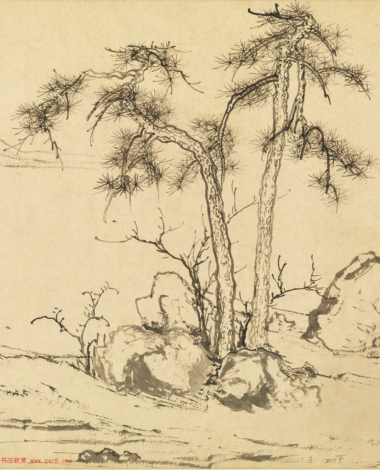 元代赵孟頫字画赏析《双松平远图卷》