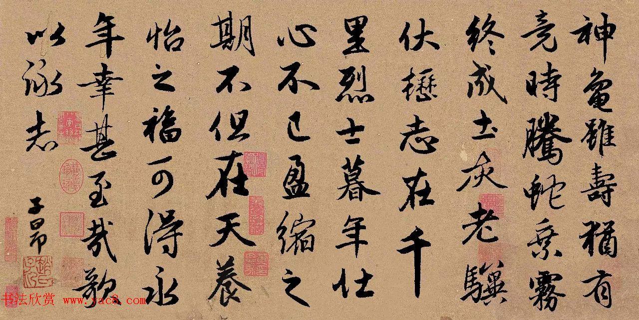 手机字帖:赵孟頫行书集字《龟虽寿》