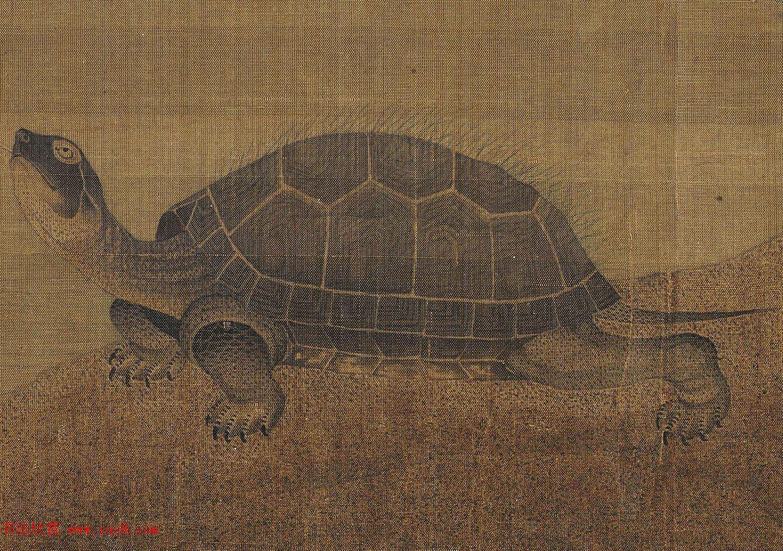 张珪传世孤本《神龟图》卷