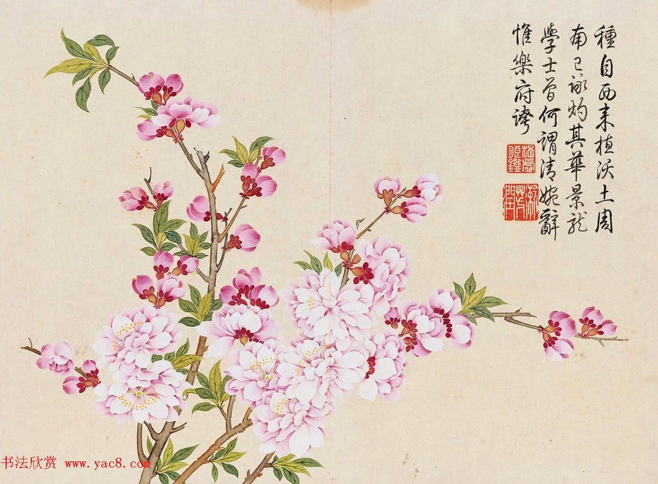 乾隆书法御题钱维城花卉册页