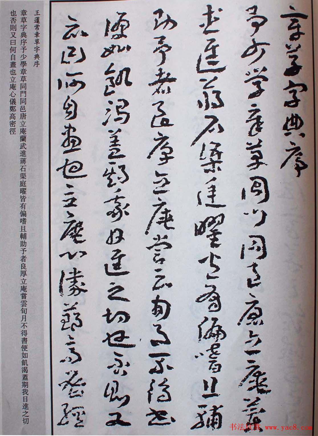 王遽常草书欣赏《章草字典序》