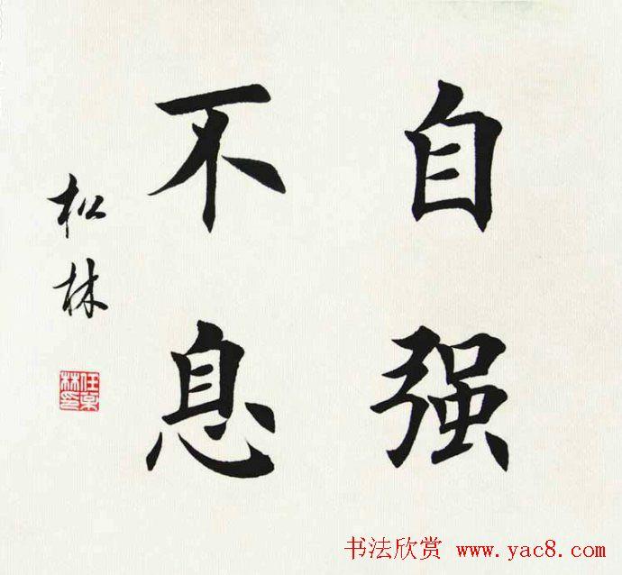毛笔成语书法_卢中南毛笔楷书字帖欣赏《中国成语300句》